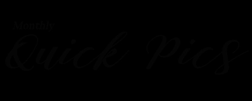 quick pic logo